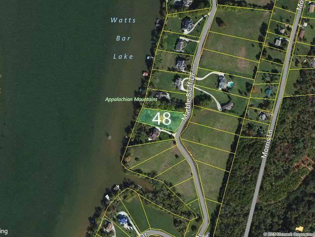 Lot 48 Marble Bluff Drive, Kingston, TN 37763 (#1116978) :: Venture Real Estate Services, Inc.