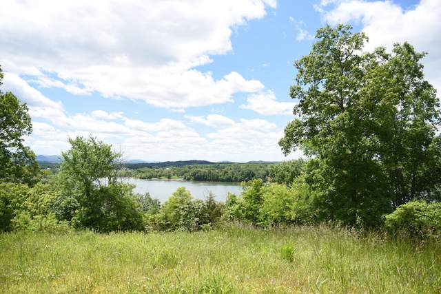 Lot 4 Waterford Way, Newport, TN 37821 (#1117041) :: Realty Executives