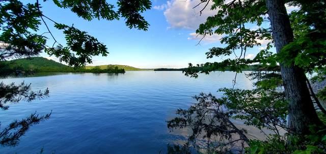 Bluegreen Way, Rockwood, TN 37854 (#1117082) :: Catrina Foster Group