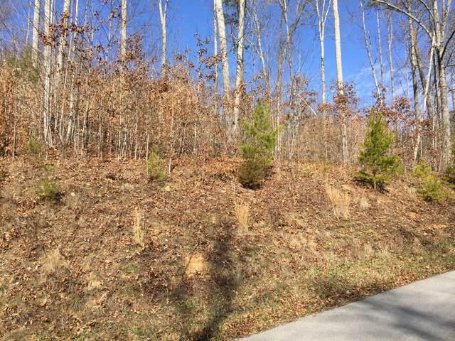 Hickory Pointe Lane, Maynardville, TN 37807 (#1117234) :: Venture Real Estate Services, Inc.