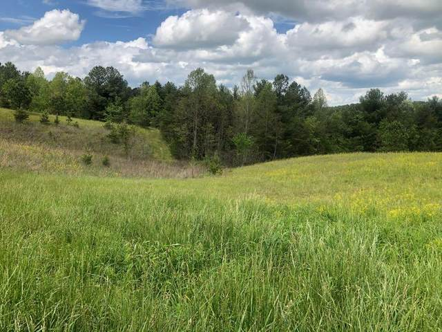 Lot 62 Vista View Pkwy, Jamestown, TN 38556 (#1117312) :: Tennessee Elite Realty