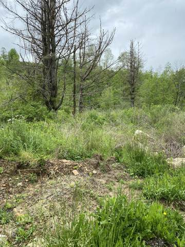 Tract4 Mt. View Rd, Robbins, TN 37852 (#1117349) :: Catrina Foster Group