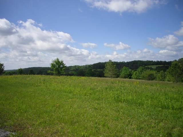 Nichol Creek Drive, Jamestown, TN 38556 (#1117479) :: Shannon Foster Boline Group