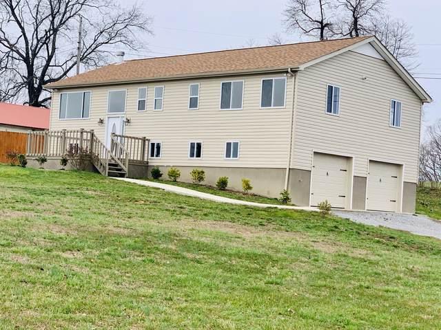 446 Lakeside Lane, New Tazewell, TN 37825 (#1117535) :: Billy Houston Group
