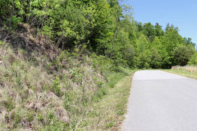 Lot 554 Whistle Valley Rd, New Tazewell, TN 37825 (#1117586) :: Billy Houston Group