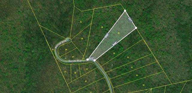 Lot 29 Bayside Boulevard (Blvd) Blvd, Bean Station, TN 37708 (#1117702) :: Venture Real Estate Services, Inc.