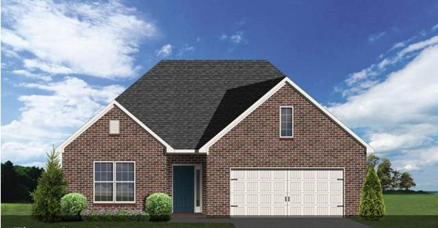 4876 Masters Drive, Maryville, TN 37801 (#1117852) :: Shannon Foster Boline Group