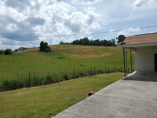 1807 Harmon Rd, New Tazewell, TN 37825 (#1117893) :: Billy Houston Group