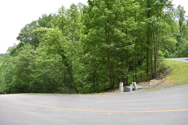 Whetstone Rd, Sevierville, TN 37862 (#1118011) :: The Terrell Team