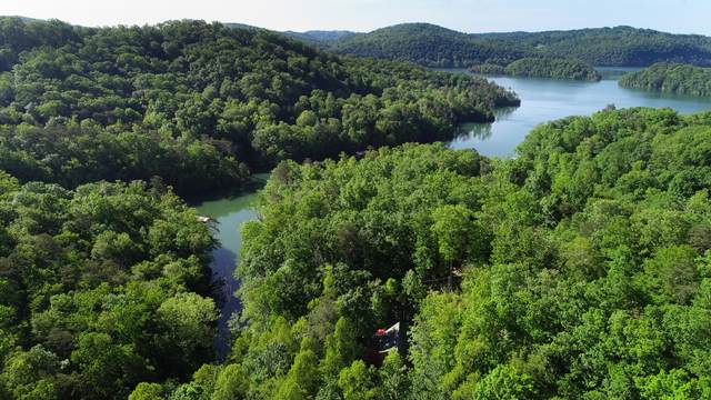 139 Cove Point Lane, Sharps Chapel, TN 37866 (#1118028) :: Shannon Foster Boline Group