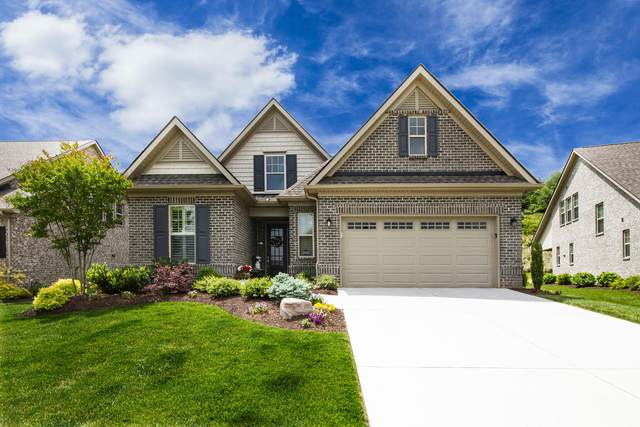 653 Dunlin Lane, Knoxville, TN 37934 (#1118069) :: Shannon Foster Boline Group