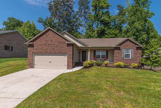 7461 Openview Lane, Corryton, TN 37721 (#1118081) :: Shannon Foster Boline Group