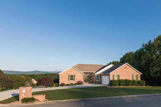 228 S Panoscenic Drive, Maryville, TN 37803 (#1118094) :: The Sands Group