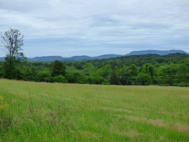 9.67 Acres Asheville Hwy, Strawberry Plains, TN 37871 (#1118151) :: Realty Executives
