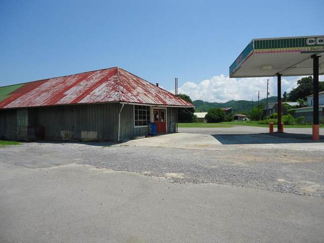 803 Veterans Memorial Drive, Tellico Plains, TN 37385 (#1118271) :: Billy Houston Group