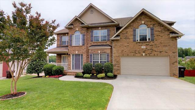 10316 Red Water Lane, Knoxville, TN 37932 (#1118283) :: Realty Executives