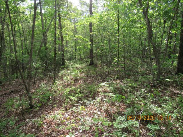 1400 Coon Hollow Rd, Sunbright, TN 37872 (#1118299) :: Venture Real Estate Services, Inc.