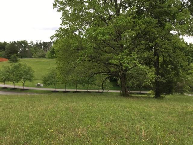 110 Conkinnon Drive, Lenoir City, TN 37772 (#1118328) :: Venture Real Estate Services, Inc.