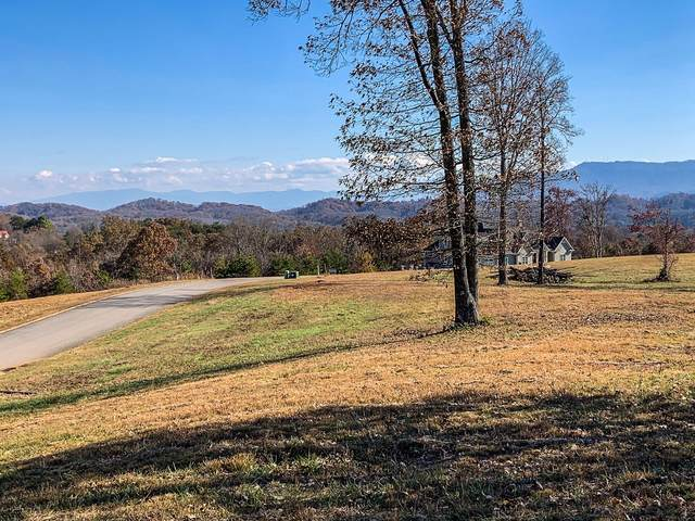 Lot 17 Charleston Park Dr, Seymour, TN 37865 (#1118384) :: The Terrell Team