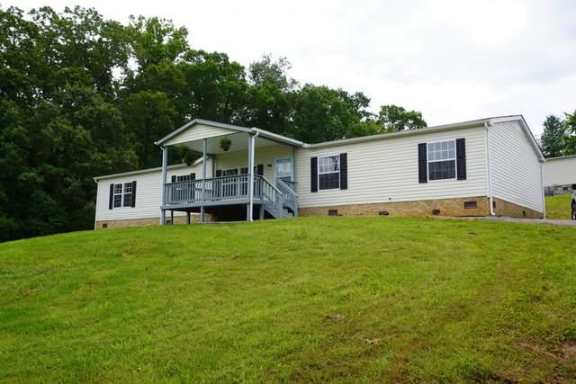146 Hidden Estates Way, Newport, TN 37821 (#1118390) :: Venture Real Estate Services, Inc.