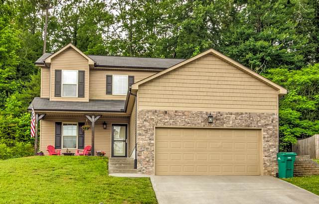 7815 Elkton Lane, Powell, TN 37849 (#1118451) :: Exit Real Estate Professionals Network