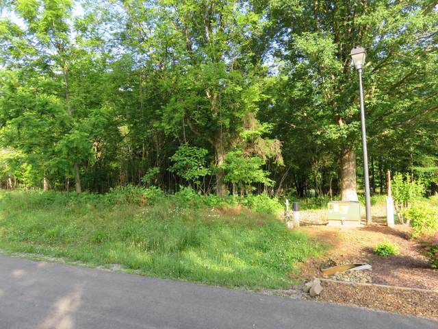Dudi Tr, Vonore, TN 37885 (#1118452) :: Billy Houston Group
