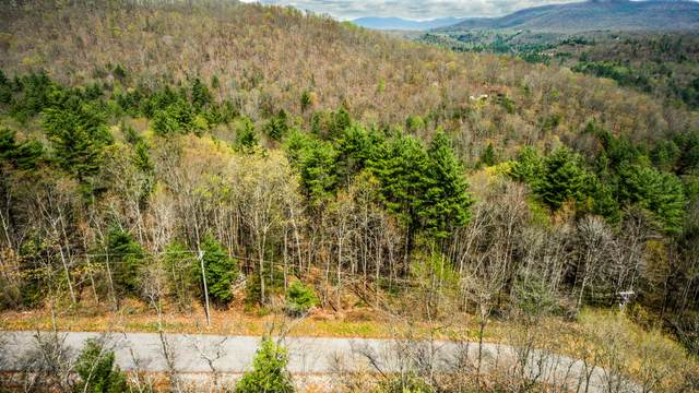 Green Ridge Trail    Lot #1, Harriman, TN 37748 (#1118608) :: Adam Wilson Realty