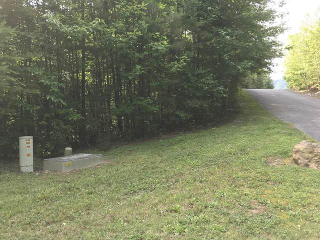Cedar Falls Way Way, Sevierville, TN 37862 (#1118667) :: The Terrell Team