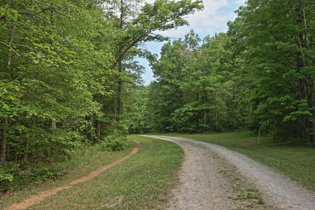 8 Acres Double Arch Retreat, Allardt, TN 38504 (#1118775) :: Billy Houston Group