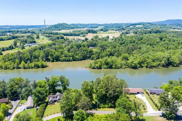 176 Lakewood Estates Lane, Harriman, TN 37748 (#1118782) :: Realty Executives