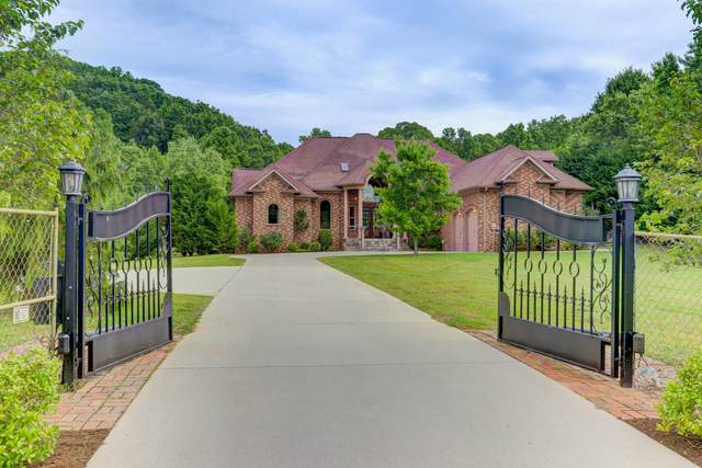 11623 Yarnell Rd, Knoxville, TN 37932 (#1118793) :: Realty Executives