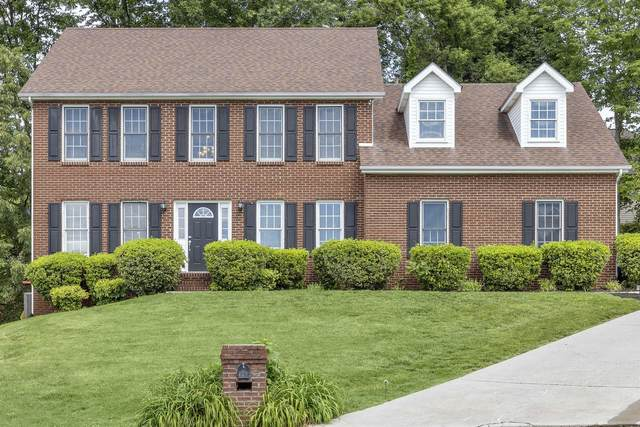 10133 Delle Meade Dr Drive, Knoxville, TN 37931 (#1118935) :: Realty Executives