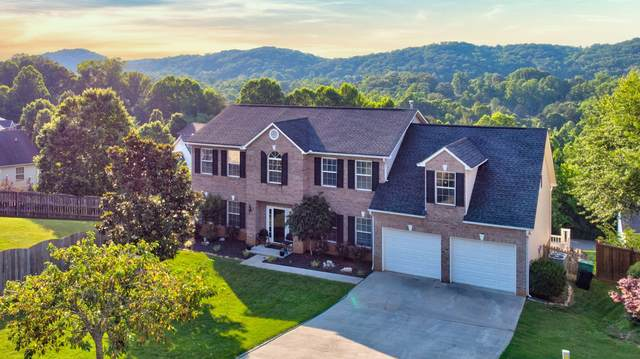 1209 Sparwood Lane, Knoxville, TN 37932 (#1118938) :: Realty Executives