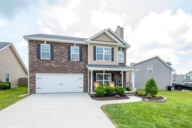 7415 Lucky Clover Lane, Knoxville, TN 37931 (#1119104) :: Venture Real Estate Services, Inc.