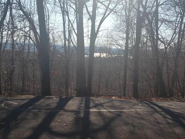 1405 Echota Lane, Mooresburg, TN 37811 (#1119116) :: Cindy Kraus Group | Realty Executives Associates