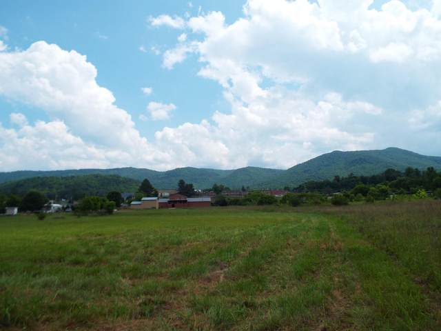 Lot #6 Padgett Mill Road, Cosby, TN 37722 (#1119233) :: The Cook Team
