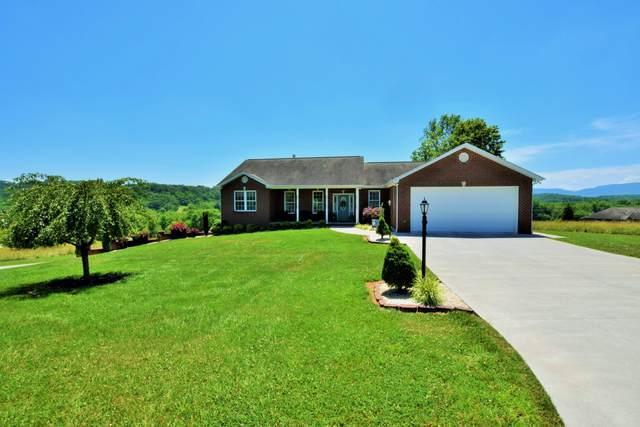405 Hatcher Rd, Seymour, TN 37865 (#1119375) :: Realty Executives