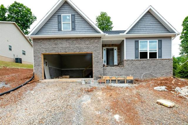 3869 High View Lane, Knoxville, TN 37931 (#1119498) :: Billy Houston Group