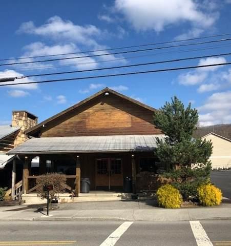 329 Historic Nature Trail Tr, Gatlinburg, TN 37738 (#1119535) :: Billy Houston Group