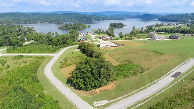 234 Majestic View Drive, Rockwood, TN 37854 (#1119579) :: Shannon Foster Boline Group