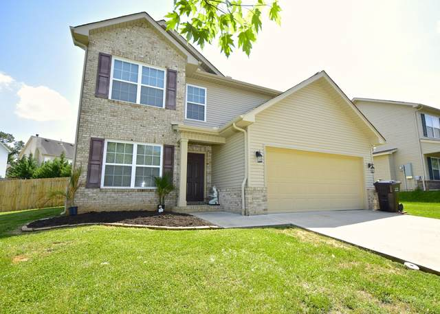 7321 Redwing Lane, Knoxville, TN 37931 (#1119904) :: Venture Real Estate Services, Inc.