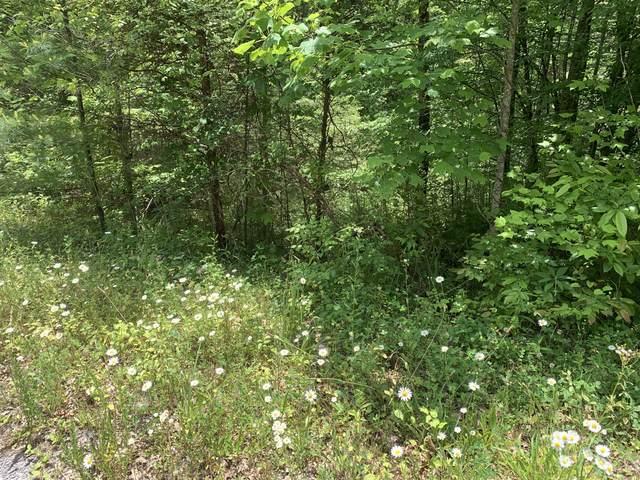 Hedge Maple Way, Hartford, TN 37753 (#1119912) :: Tennessee Elite Realty