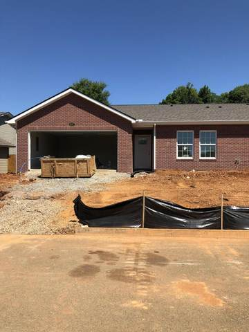 837 Spring Park Rd, Knoxville, TN 37914 (#1119913) :: Venture Real Estate Services, Inc.