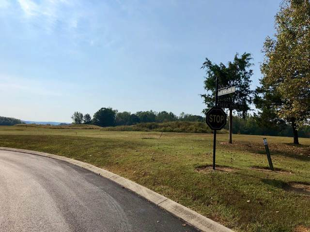 Lot 125 Black Bear Cove, Englewood, TN 37329 (#1119945) :: Realty Executives Associates
