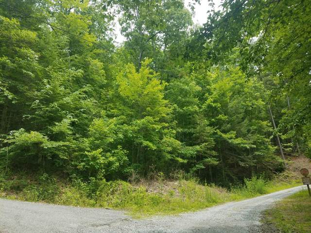 Lot 6 Lumber Jack Way, Sevierville, TN 37876 (#1119969) :: Billy Houston Group