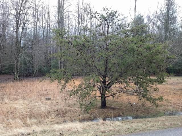 Bud Ross Rd Lot 23, Winfield, TN 37892 (#1120435) :: Tennessee Elite Realty