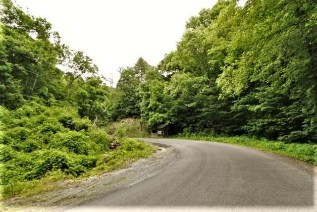 1 Rafter Rd, Tellico Plains, TN 37385 (#1120850) :: Realty Executives Associates Main Street