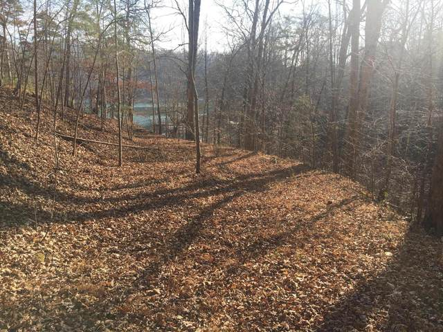 Lot 1 Big Creek Rd, LaFollette, TN 37766 (#1120907) :: Cindy Kraus Group | Realty Executives Associates