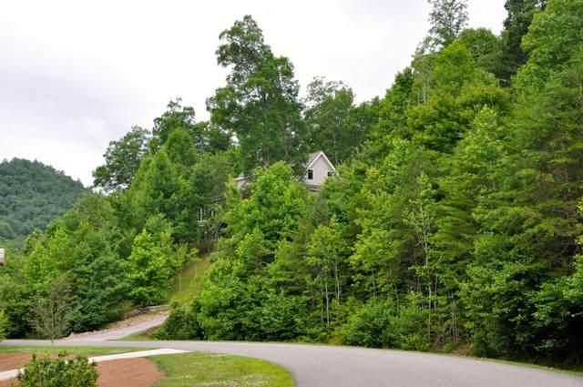 418 Kinzel Springs Way, Townsend, TN 37882 (#1121154) :: Billy Houston Group