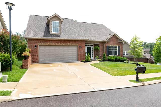 4238 Rare Earth Drive, Knoxville, TN 37938 (#1121226) :: Billy Houston Group